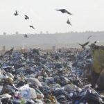 Metade das cidades brasileiras ainda despeja lixo a céu aberto e 58% delas não têm sustentabilidade financeira para tratar os resíduos, revela estudo